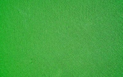 Grün –So lässt sich die Trendfarbe des Sommers kombinieren
